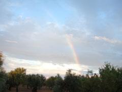 アップロ・ルカーネの虹