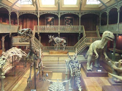 ミニチュア博物館