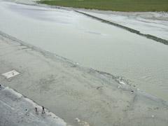 モンサンミッシェルの干潟