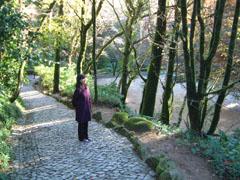 ペナ宮への山道